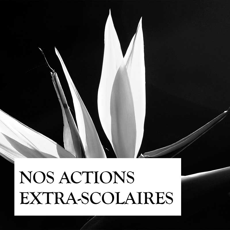 nos-actions-extra-scolaires