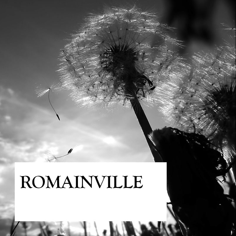 romainville-carre